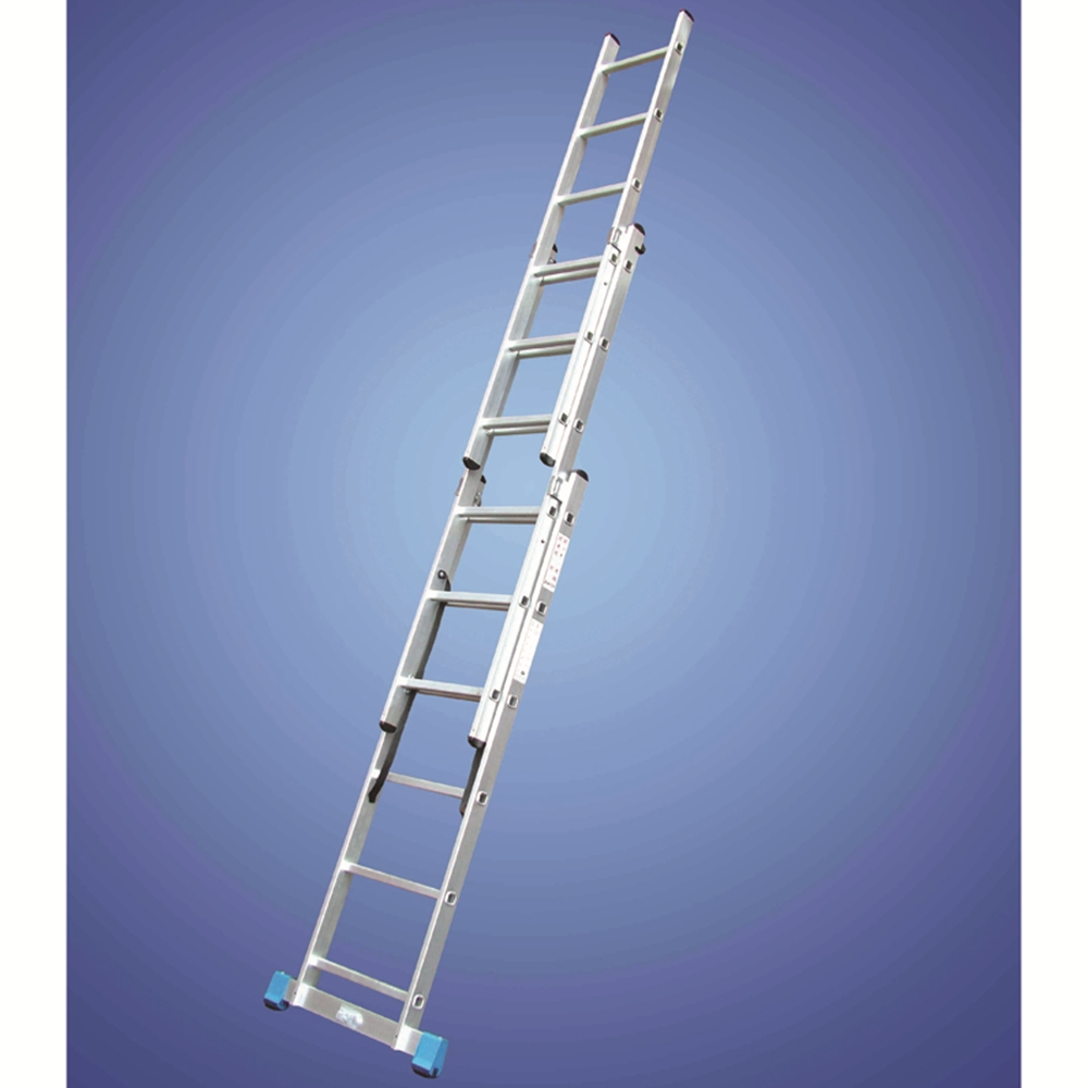 Professional Ladder