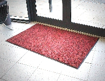 Lustre Entrance Mat
